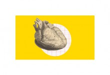 Erasme, cardiologie